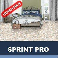 Спринт PRO