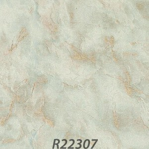 R22307_palladio