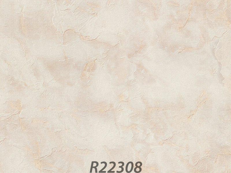 R22308_palladio