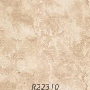 R22310_palladio