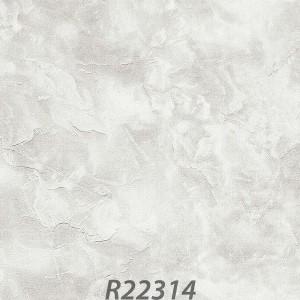 R22314_palladio