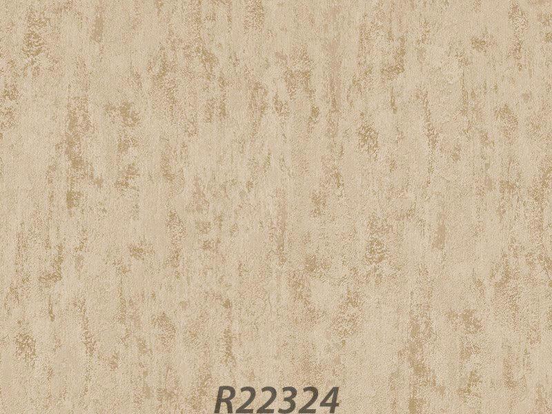 R22324_palladio